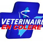 Le 6 novembre : journée sans vétérinaires !